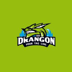 Now is the time for your brand to have identity, with a free dragon logo.